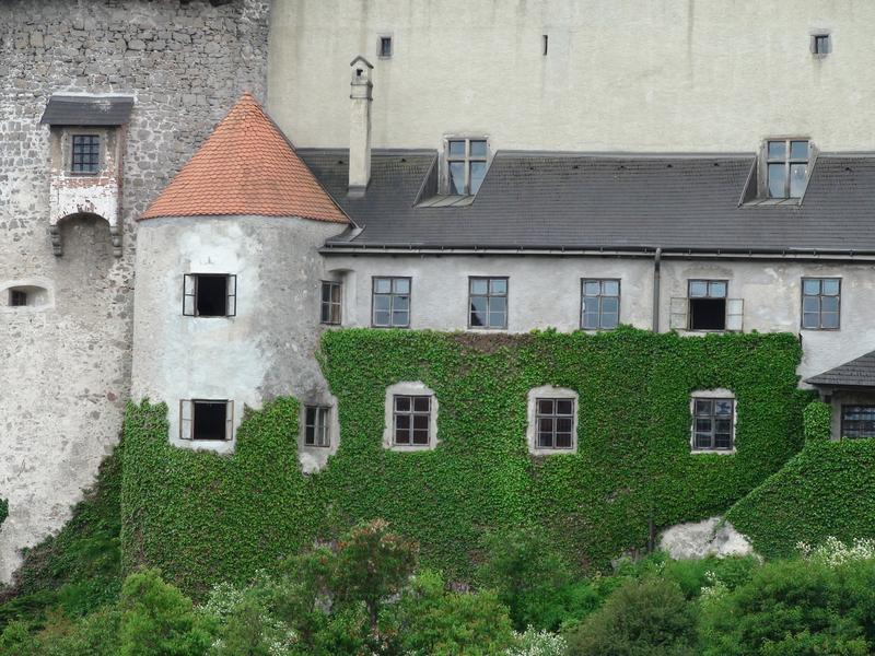 Hrad Heidenreichstein - Bontour