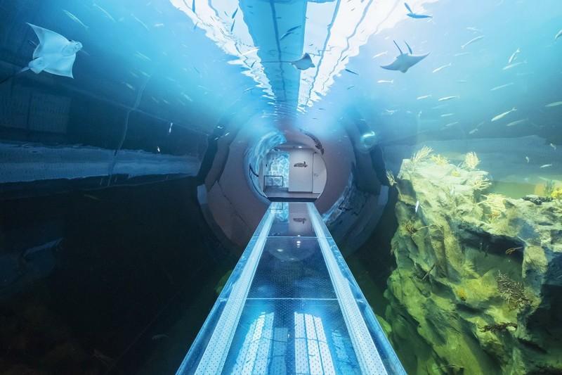 Mořské akvárium - Bontour