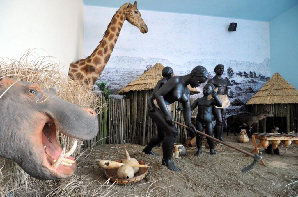Africké muzeum - Bontour