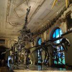 Vídeňská muzea - Bontour