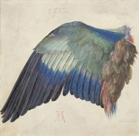 Albrecht Dürer - Bontour